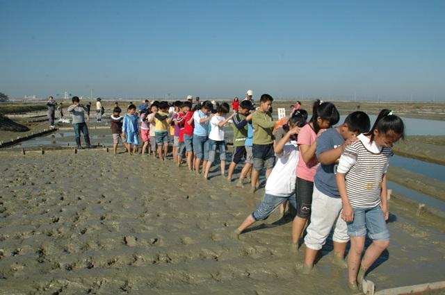 洲南鹽場將鹽田整建工程轉化為學童的戶外教學,雙腳踩漿 (提供者:蔡炅樵)